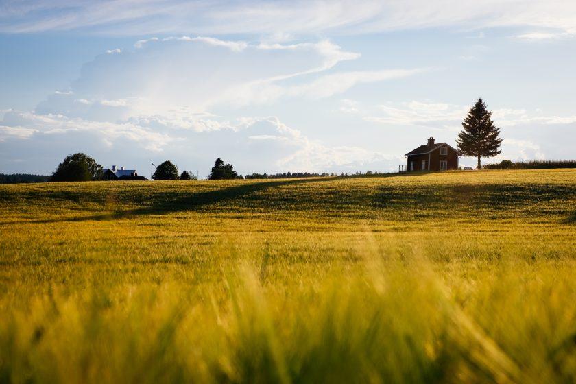 Pomysły na biznes na wsi czyli jak zarobić mieszkając na wsi